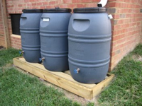 rain barrels under downspout